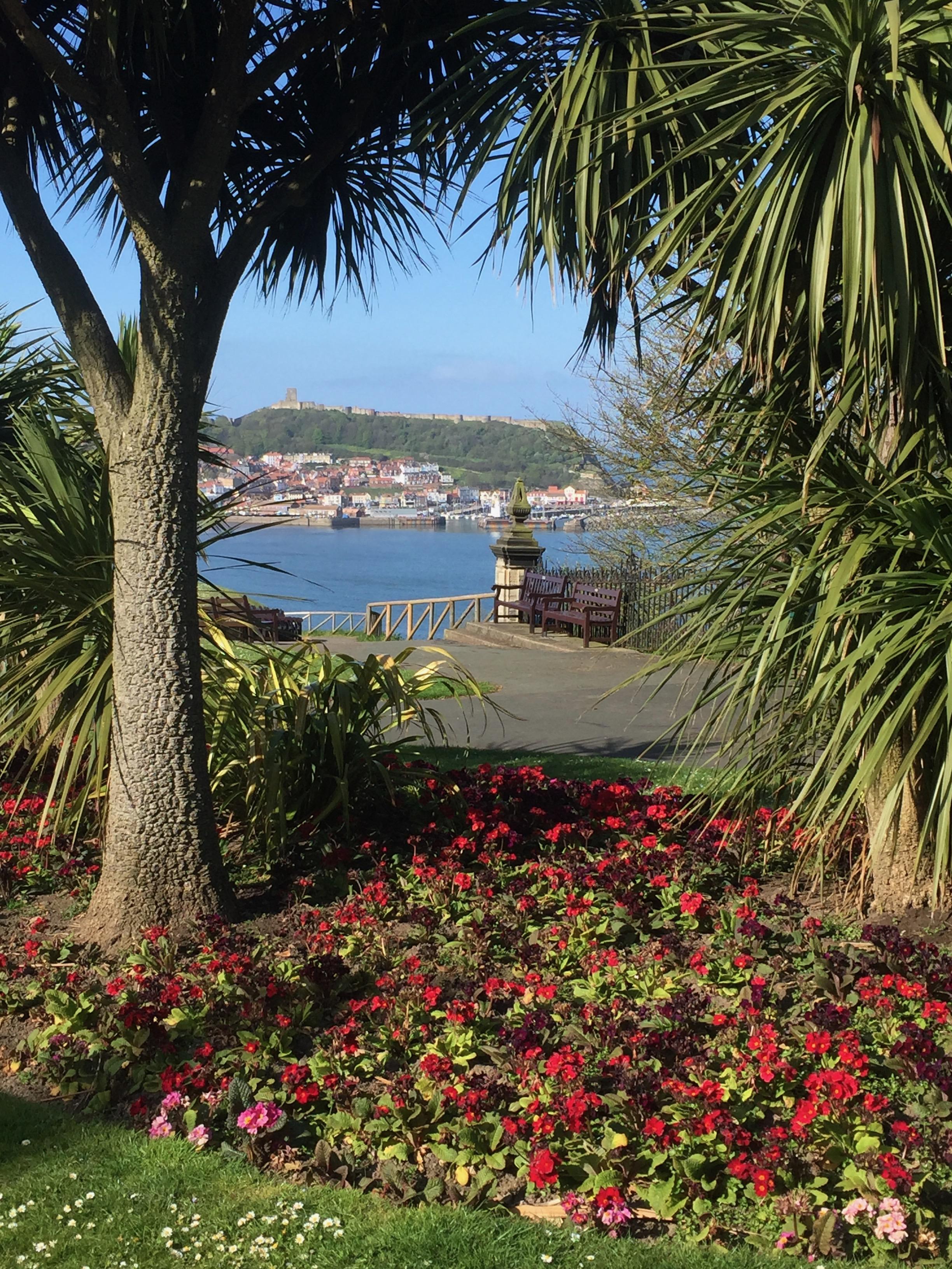 South Bay from Esplanade